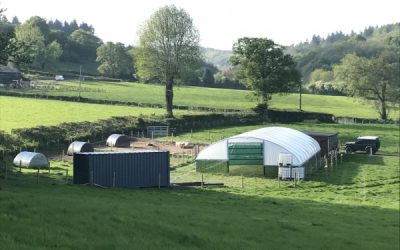 From Field to Farm – A whistle stop tour